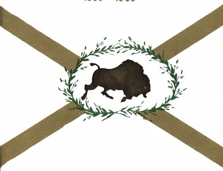 [Buffalo Grove, Illinois flag]